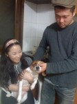 Patrick and EunHye decided to get married when they realized they both love tormenting animals